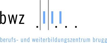 BWZ Logo
